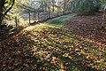 Boundary of Dawyck Gardens - geograph.org.uk - 1574188.jpg