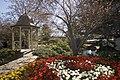 Bowral Tulip Festival - panoramio (3).jpg