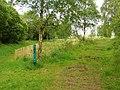 Brackagh Moss - geograph.org.uk - 1328016.jpg