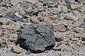 Breadcrust Bomb (15302327265).jpg
