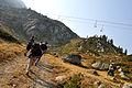 Brezovica Mountain 05.jpg