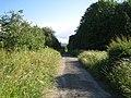 Bridleway near Teffont Field Buildings 1 - geograph.org.uk - 883520.jpg