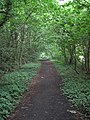 Bridleway north of Street Hey Lane - geograph.org.uk - 1383369.jpg