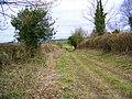 Bridleway to Toyd Down - geograph.org.uk - 1176033.jpg