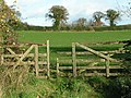 Broken gate into a field at Stoneyford - geograph.org.uk - 1596913.jpg
