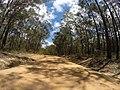 Brooman NSW 2538, Australia - panoramio (136).jpg