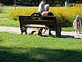 Bucharest, Romania. Summer landscape (granny, grandfather, grandson and the dog).jpg