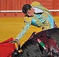 Bullfighter in the Plaza de toros de la Real Maestranza de Caballería in Seville.jpg