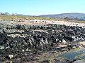 Buncrana beach 1.JPG