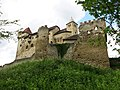 Burg Liechtenstein Bild 17.jpg