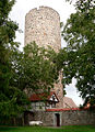 Burg Loburg Ansicht Turm.jpg