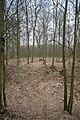 Burgstall Bildhausen-9412.jpg