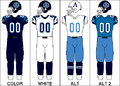CFL Jersey TOR2009.png
