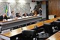 CMMC - Comissão Mista Permanente sobre Mudanças Climáticas (23636013525).jpg