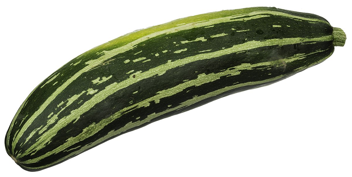 Image result for types of zucchini