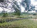 Cajazeirinhas - State of Paraíba, Brazil - panoramio (5).jpg