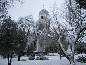 Salonta - Image: Calvinist Cathedral