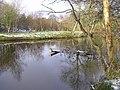 Camowen River - debris - geograph.org.uk - 1150246.jpg