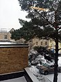 Campus Snow 4 (24404151366).jpg