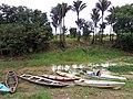 Canoas dos ribeirinhos amazonenses em Cacau Pireira.jpg