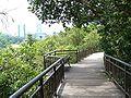 CanopyWalk-KentRidgePark-Singapore-20070809.jpg