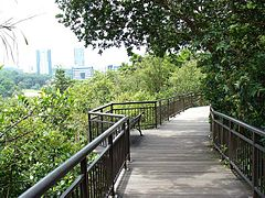 CanopyWalk-KentRidgePark-Singapore-20070809.jpg