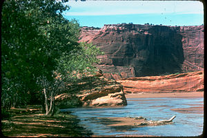 Canyon de Chelly National Monument CACH2824.jpg