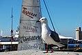 Cape Town 2012 05 12 0306 (7179904283).jpg