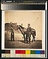 Captain Croker, 17th Regiment LCCN2001700623.jpg