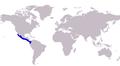 Caranx vinctus distribution.png