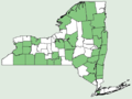 Cardamine diphylla NY-dist-map.png