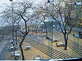 Carnegie Museum of Art and Natura; History - looking outside.JPG