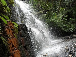 Yacambú National Park - Image: Cascada Parque Yacambu
