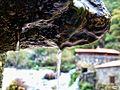 Cascadas del Barosa (Barro)83 (6468967541).jpg