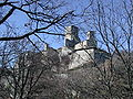 Castello carpineti e bosco.jpg