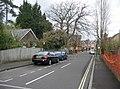 Castle Road - geograph.org.uk - 751010.jpg
