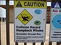 Caution Humpback Whale Collision Hazard.jpg