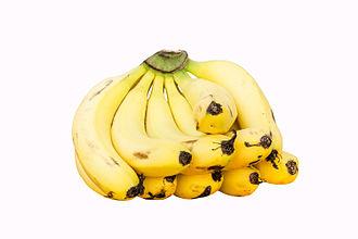 Cavendish banana - Cavendish banana