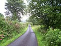 Cefn y Coed Common - geograph.org.uk - 509055.jpg