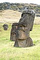Chile-03050 - Crooked Neck (49073158307).jpg