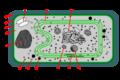 Cianobacteris estructura.png