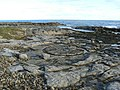 Circles in the rock - geograph.org.uk - 1115718.jpg
