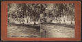 Clarendon Hotel Park, Saratoga, N.Y, from Robert N. Dennis collection of stereoscopic views 3.png