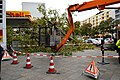 Cleanup efforts after storm Xavier. Spielvogel 2.jpg