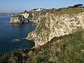Cliffs, Carlyon Bay - geograph.org.uk - 1238013.jpg