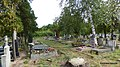Cmentarz ewangelicko-augsburski w Bydgoszczy - panoramio - Kazimierz Mendlik (25).jpg