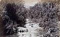 Collectie Nationaal Museum van Wereldculturen TM-60061666 Riviergezicht in Bog Walk Jamaica.jpg