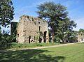 Colombier-le-Cardinal château des Célestins tour 14e.jpg