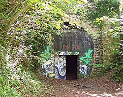 Combe Down Tunnel, near Bath - geograph.org.uk - 41502.jpg