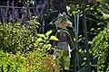 Community Garden Fotor 10 (71236985).jpeg